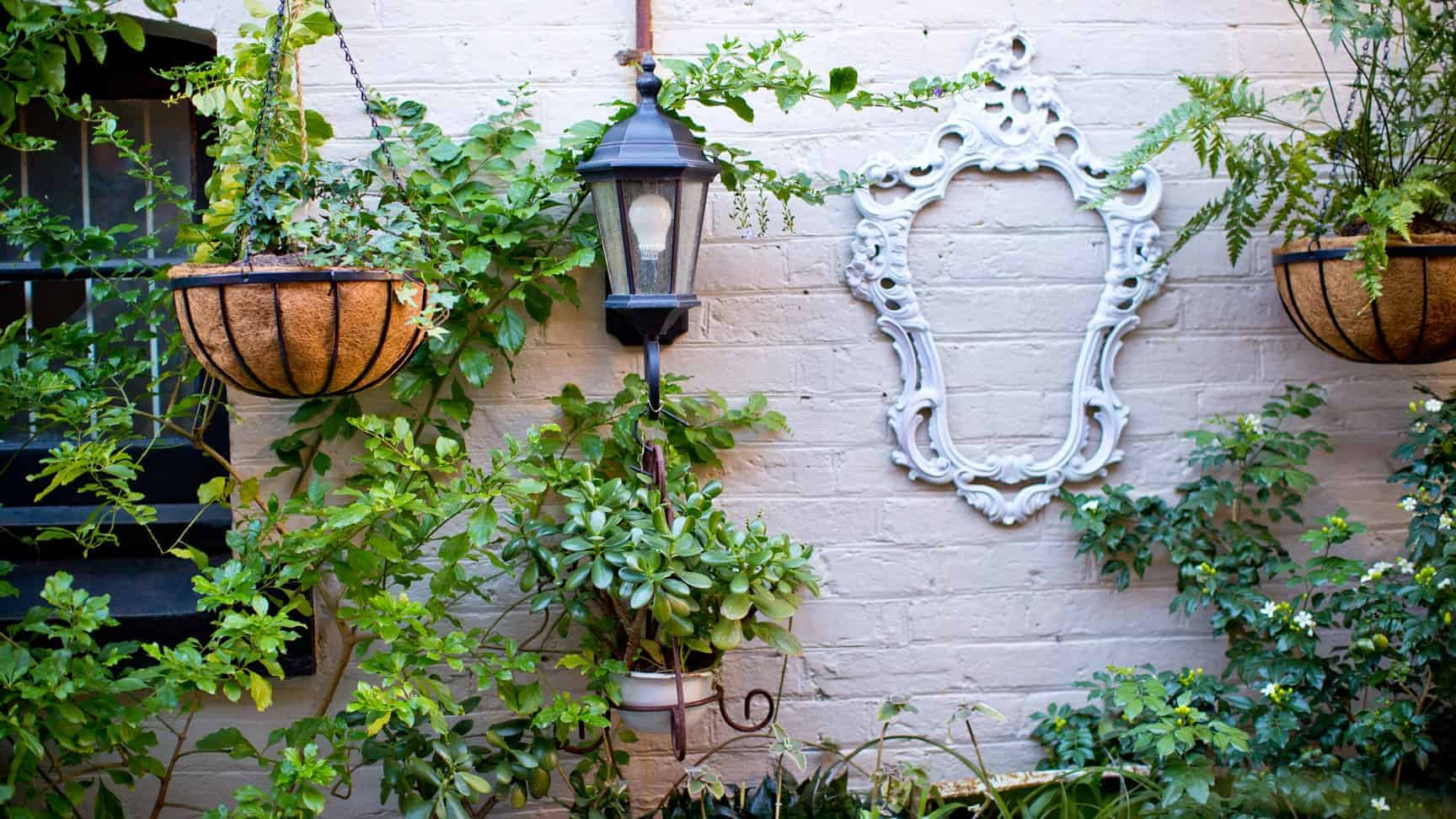 Rafter & Rose -Ipswich dining